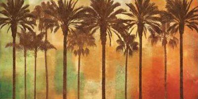 Seba John – Palm Paradise