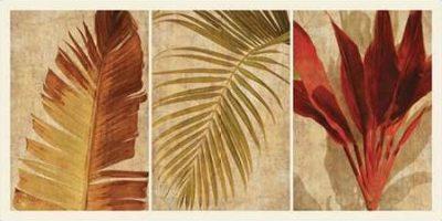 Seba John – Palm Vista I