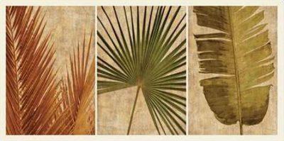 Seba John – Palm Vista II