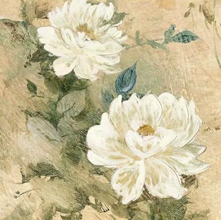 Wilcox Jil - White Flowers I