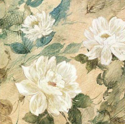 Wilcox Jil – White Flowers II