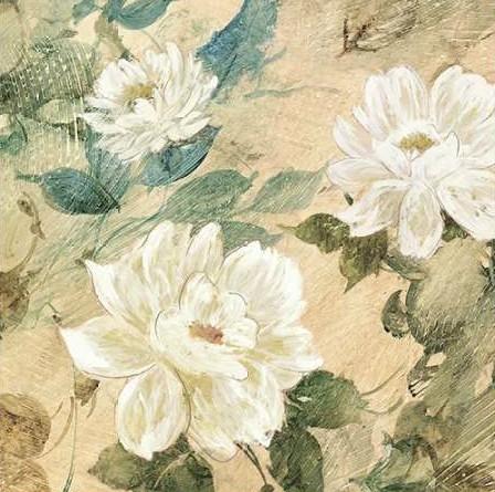 Wilcox Jil - White Flowers II
