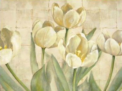 Mckee Lauren - White Tulips on Ivory