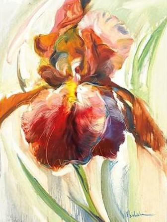 Zielinska Maria – Colors of Iris II