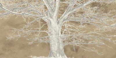Aprile Alessio – White Oak