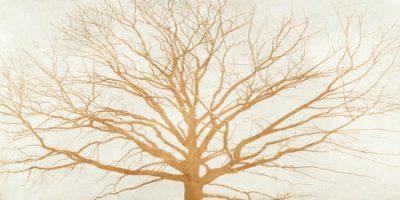 Aprile Alessio – Tree of Gold