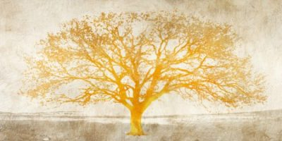 Aprile Alessio - Shimmering Tree