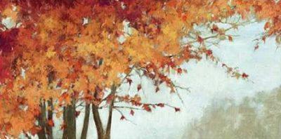 PI Studio – Fall Canopy I