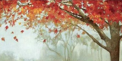 PI Studio – Fall Canopy II