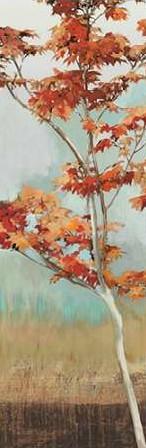 Pearce Allison – Maple Tree I