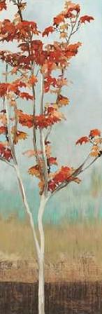 Pearce Allison – Maple Tree II