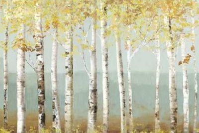 Pearce Allison – Soft Birch