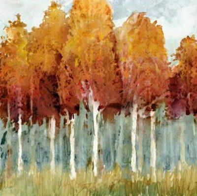 Selkirk Edward – Birch I