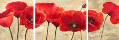 Cynthia Ann – Red Poppies – 3