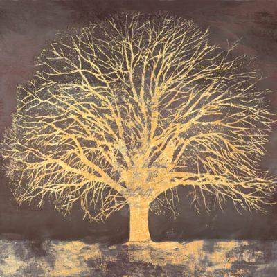 Alessio Aprile – Golden Oak