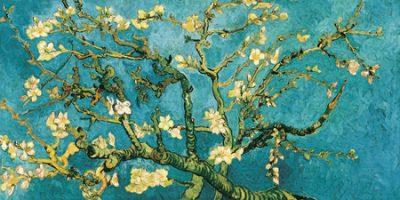 Vincent Van Gogh – Mandorlo in fiore (detail)