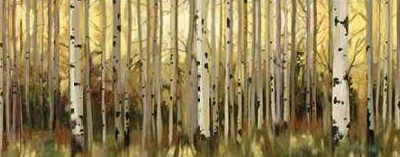 Pearce Allison – Forest Light