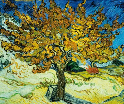 Vincent Van Gogh – Mulberry Tree