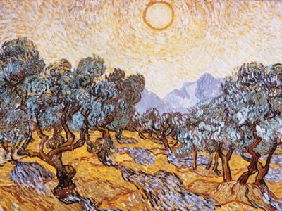 Vincent Van Gogh – The Olive Trees