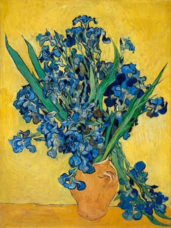 Vincent Van Gogh – Irises IΙ