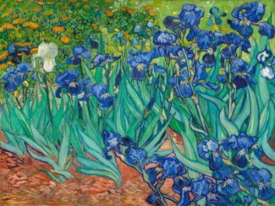 Vincent Van Gogh – Irises