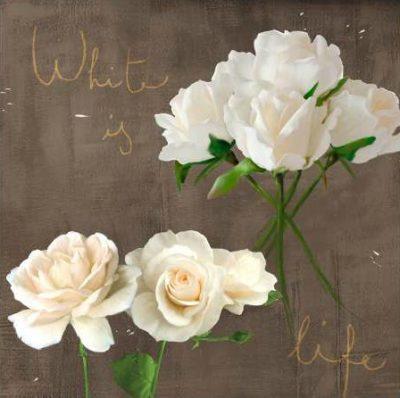 Rizzardi Teo – White Roses