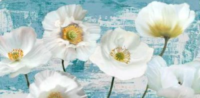 Sanna Leonardo – Washed Poppies (Aqua)