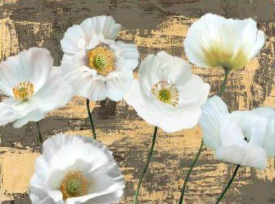 Sanna Leonardo – Washed Poppies (Ash and Gold)