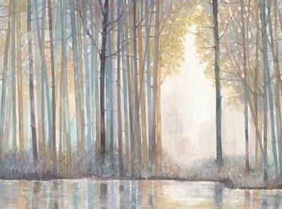 Wyatt Norman Jr – Forest Reflections