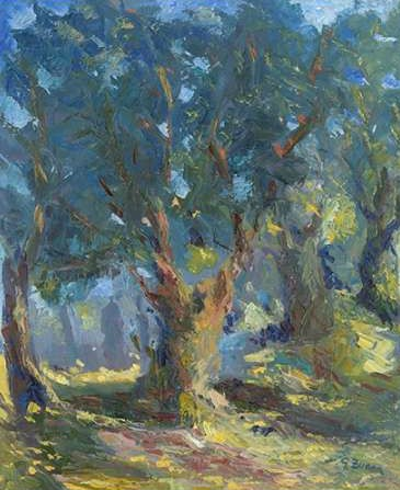 Zucca Gianfranco – Secular olive tree country side sardinia