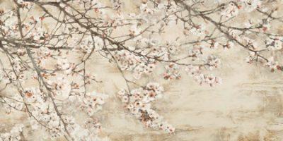 Silvia Mei – Ciliegio in fiore