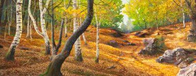 Adriano Galasso – Sentiero nel bosco