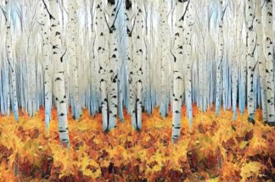 Butcher Sarah – Birch Forest