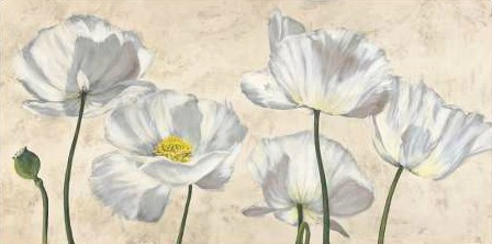 Luca Villa - Poppies in White