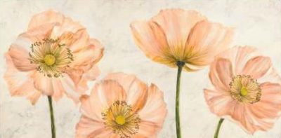 Luca Villa – Poppies in Pink
