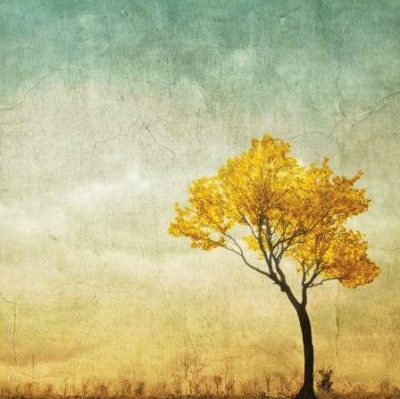 Anonymous – Golden Tree in the Meadow