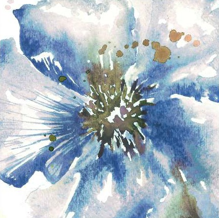 Tre Sorelle Studios - Blue Watercolor Poppy Close Up II