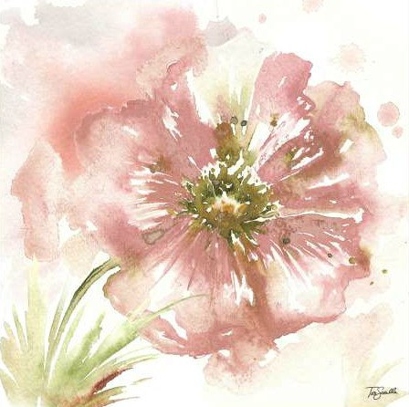 Tre Sorelle Studios - Blush Watercolor Poppy I
