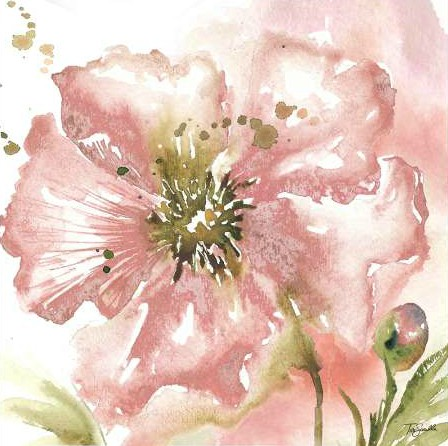 Tre Sorelle Studios - Blush Watercolor Poppy II
