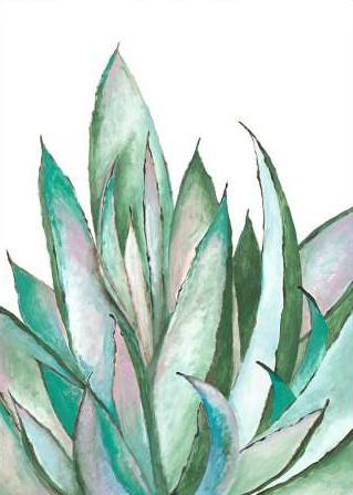 Loco Filippo - Aloe Succulent
