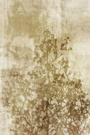 Roko Ken – Dream of Trees II