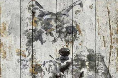 Orlov Irena – Wolf Gaze