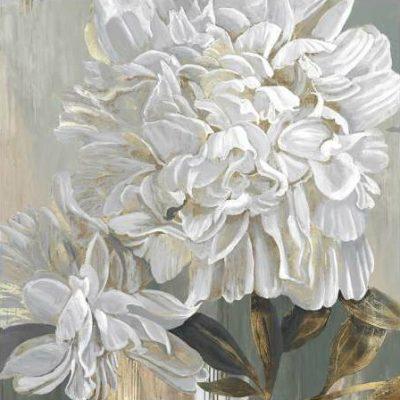 Duchesne Penelope – Cecilia I