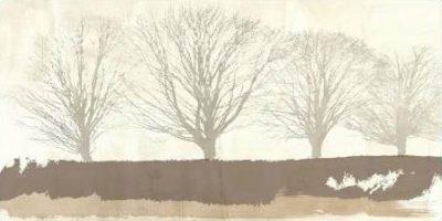 Alessio Aprile – Tree Lines Neutral