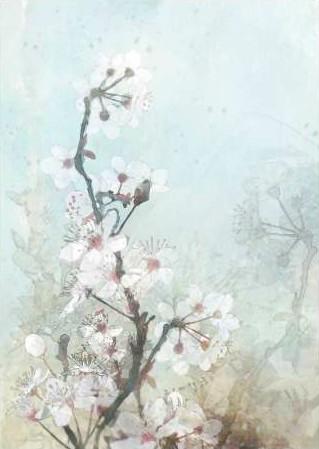 Roko Ken – Climbing Cherry Blossoms II