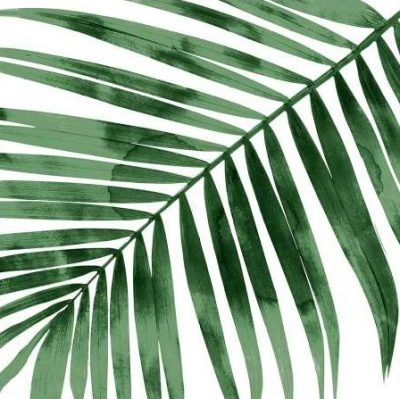 Miller Melonie – Tropical Green Palm I