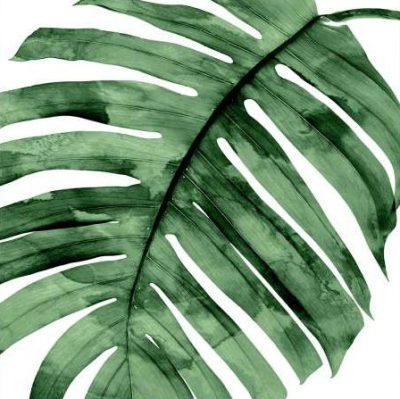 Miller Melonie – Tropical Green Palm II