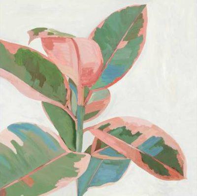 Jensen Asia – Pink Ficus I