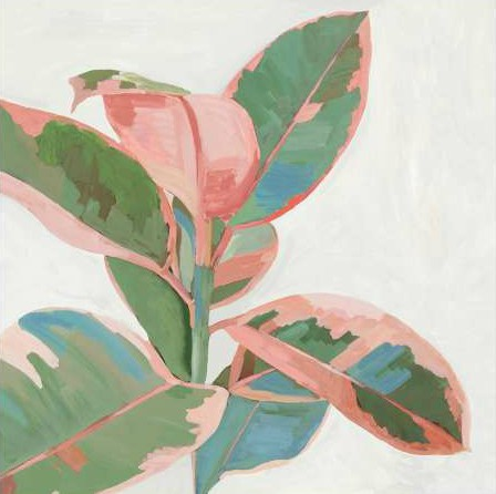 Jensen Asia - Pink Ficus I