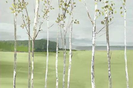 Pearce Allison - Birch Valley